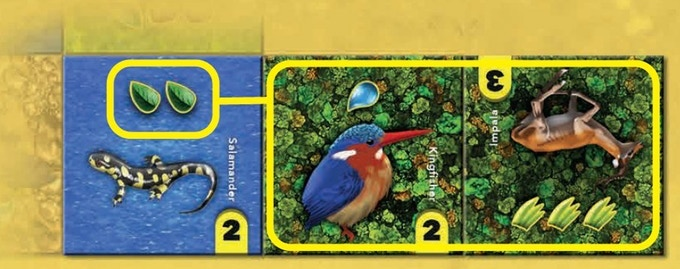 The Salamander has its needed habitat adjacent in an area of 2 forest tiles. The Kingfisher has its water adjacent. The Impala is missing 3 grassland.