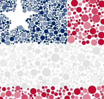 """Close-up detail of """"Stars & Stripes & Ishihara"""" (since the circles are hard to see in the full-flag image above)."""