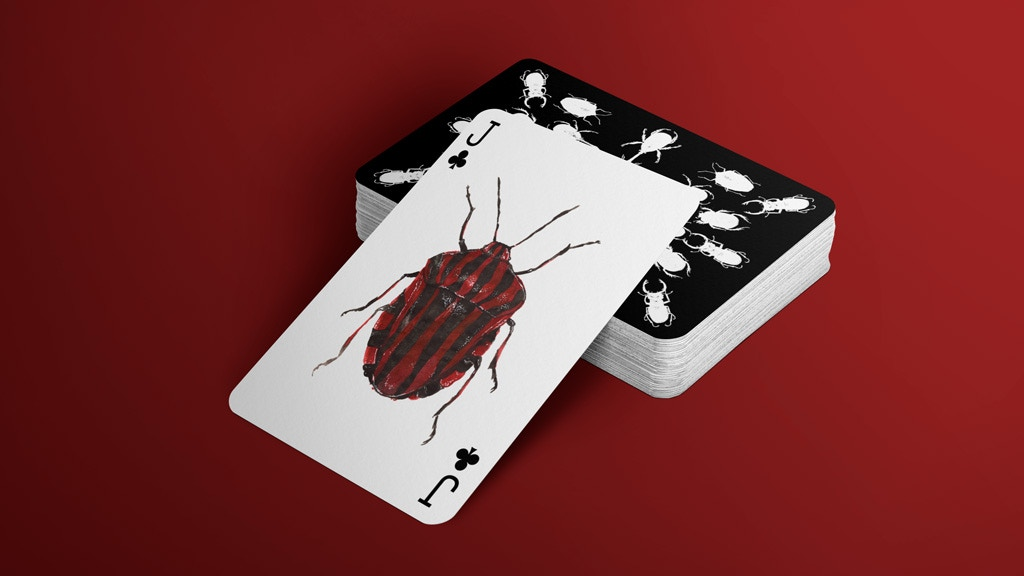 Jewelry Box: A fantastic deck of magnificent beetles