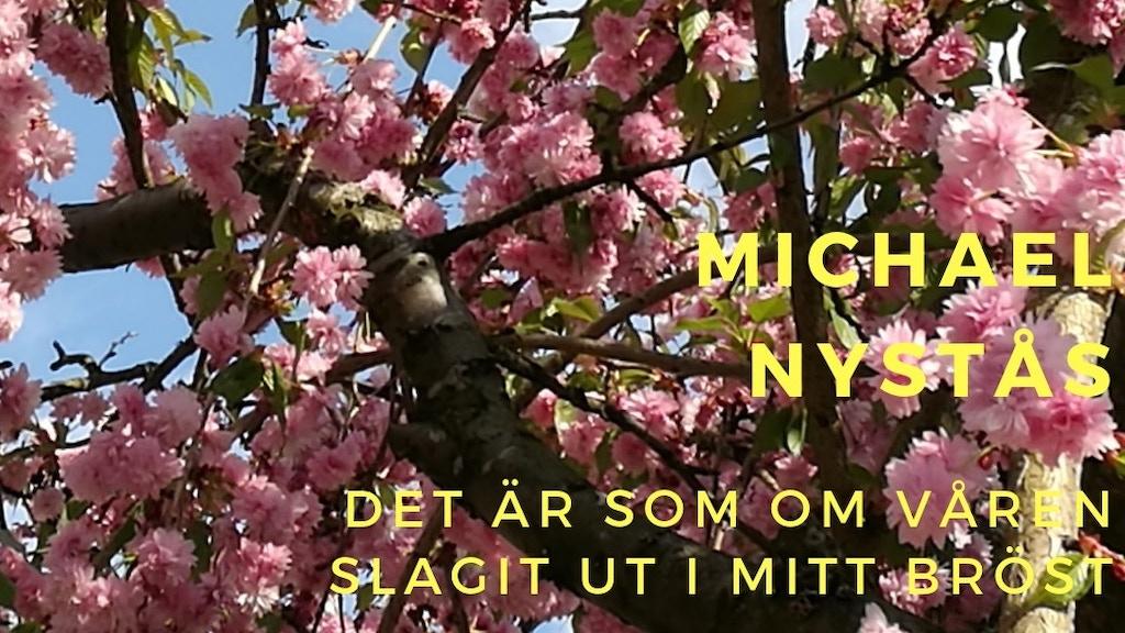 """CD-utgåva av """"Det är som om våren slagit ut i mitt bröst"""" project video thumbnail"""