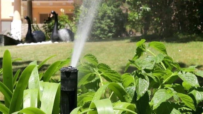 Automatic Gardening