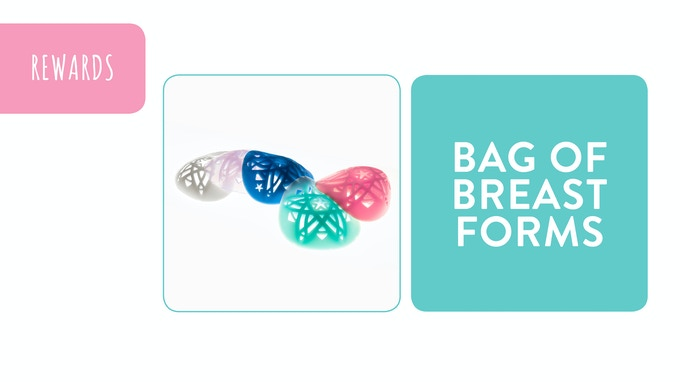 Reward - Bag of Breast Forms: pledge £495