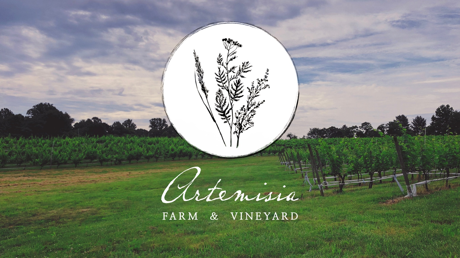 Cultivating sustainable food and wine culture in rural Virginia.
