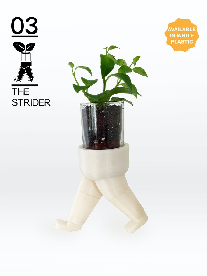 For home or on the go! Take a walk on the wild side with The Strider.