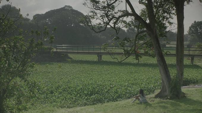 Ungraded screengrab from Filipiñana, shot at Hacienda Luisita