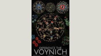 The Voynich Experience