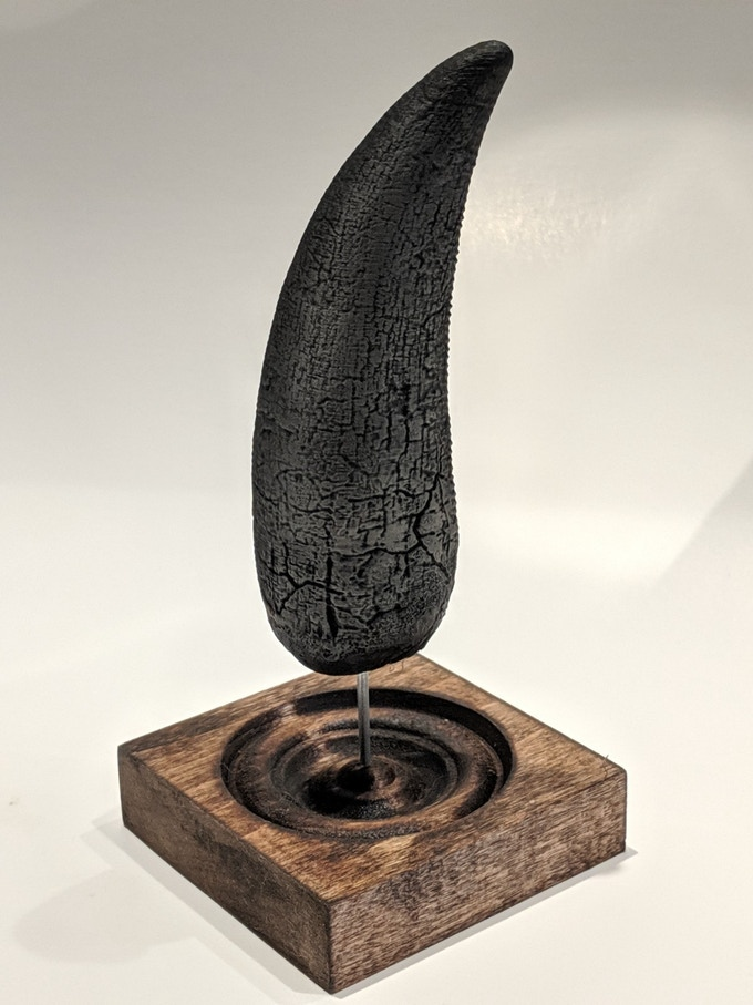 Our graphite-finished T rex tooth with wooden base.