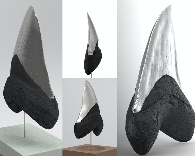 Simulation of our exclusive meg tooth in cast pewter with a jet-black resin root. This is bound to turn heads. Comes with concrete base.