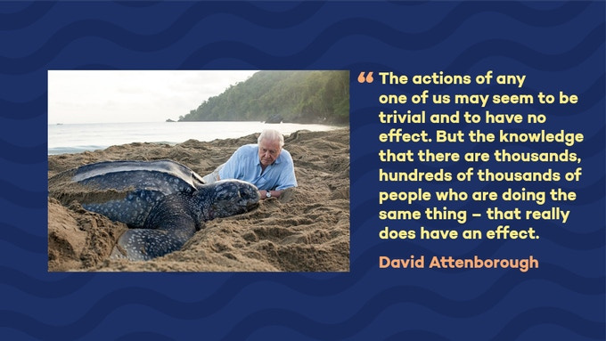 David Attenborough's Blue Planet II started a new wave of action and awareness about ocean plastics