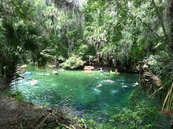 Swimming at Blue Springs State Park