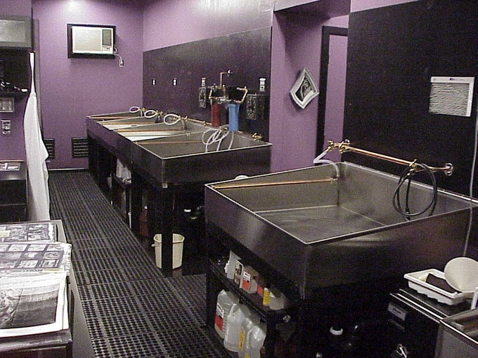 Darkroom sinks designed for mural printing.