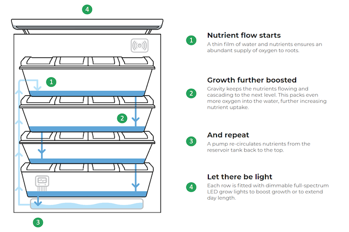 Soilless NFT grow system creates a healthy environment for plants to thrive in