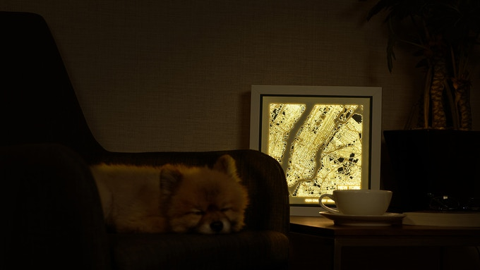 Even our friend doze off to the comforts of the ambient surroundings!