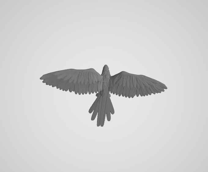 3d CAD Parrot from above