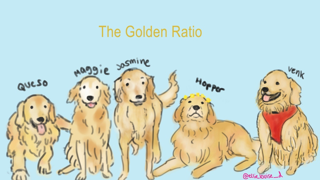 The Golden Ratio Illustrated Book project video thumbnail