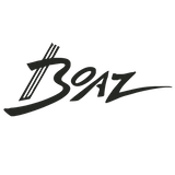 Boaz innovative stringed instruments
