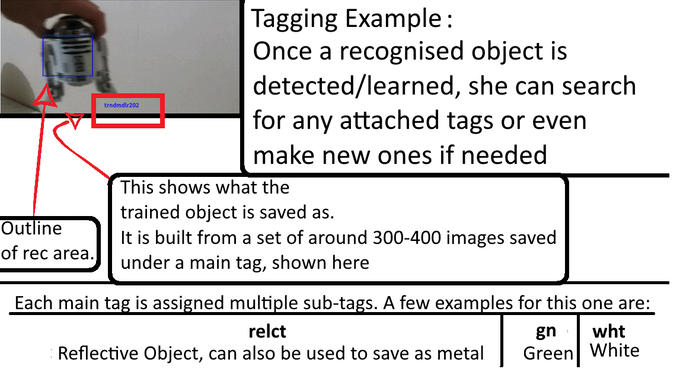 Here we use the past gif demonstrating recognition to help illustrate how tags work for objects.