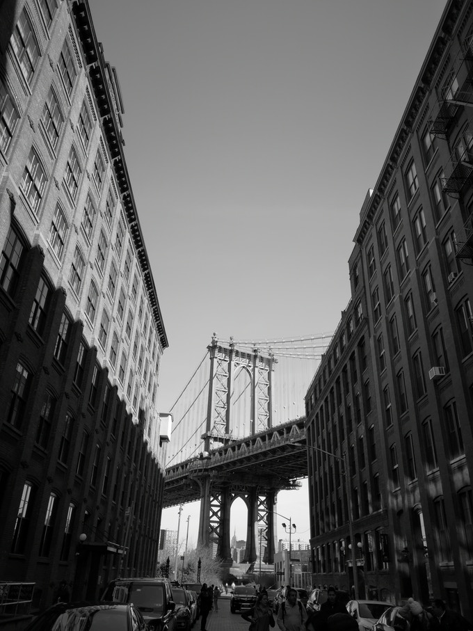 VIEWS FROM DUMBO