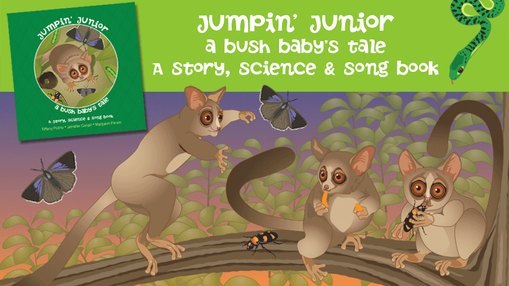 Jumpin' Junior - A Bush Baby's Tale Children's Book project video thumbnail