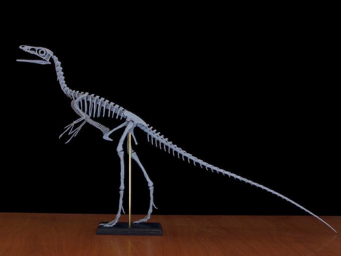 Upright posture.