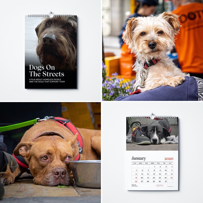 Dogs On The Streets 2020 calendar