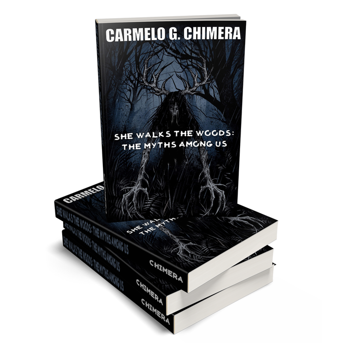 Available in paperback or digital formats.