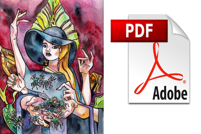 """For $40, you can receive a paperback and digital copy of """"Dark Lady Returns,"""" plus an exclusive poster by Jen Tracy"""