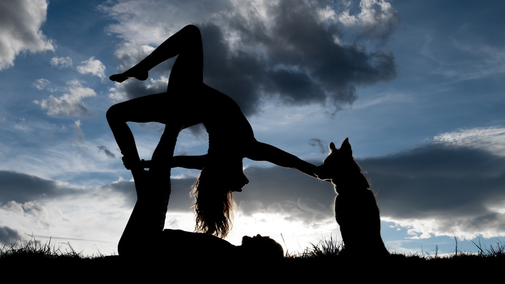 The Yoga Dog Project project video thumbnail