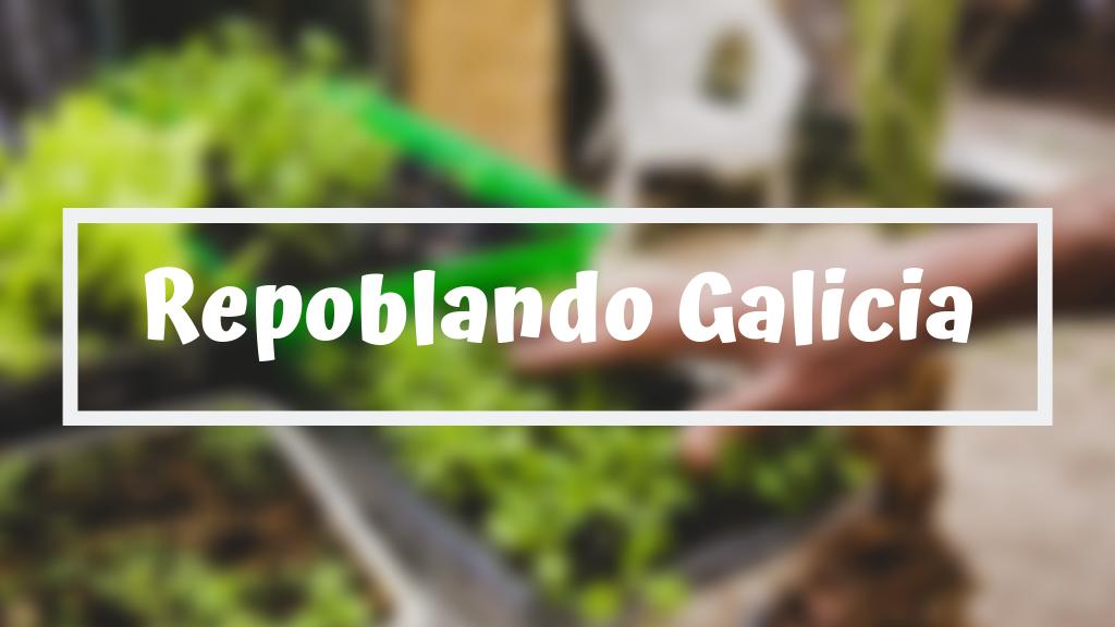 Project image for Repoblando Galicia