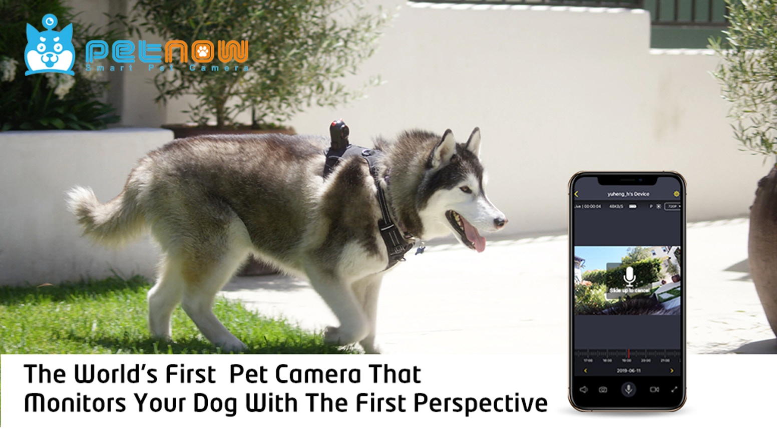 The world's first pet camera that monitors your dog with the first perspective