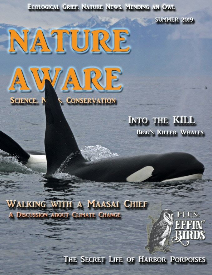 Nature Aware (Issue 1)