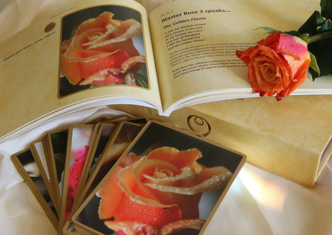 Rose Alchemy Rose Oracle for the Heart... 52 beautiful Rose cards, 130 page full colour booklet and keepsake box