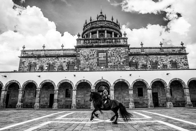 Le magnifique cheval et son cavalier devant le couvent