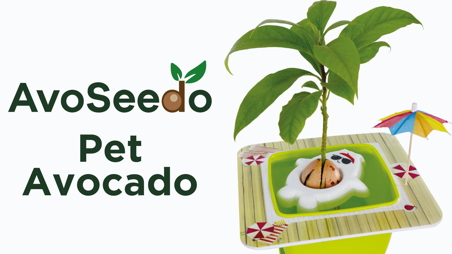 It's unique design makes it the most fun and easiest way to grow your own Avocado Tree at home. Pre-Order yours now!