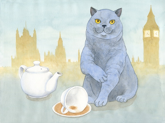 British Shorthair with Earl Grey Tea