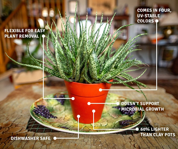 Indapot: The Reusable Silicone Plant Container