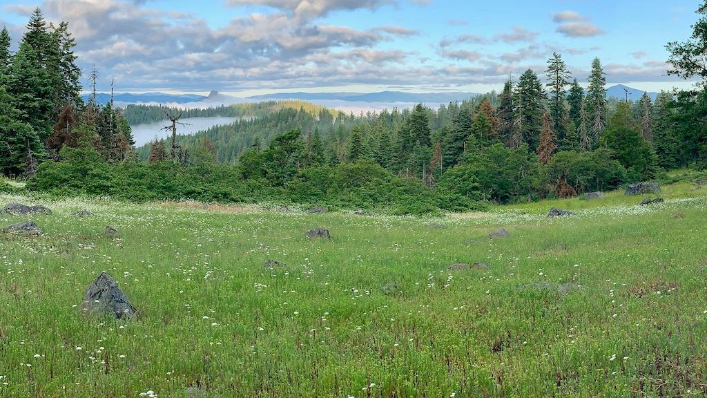 Deep Green: Cascade-Siskiyou National Monument project video thumbnail