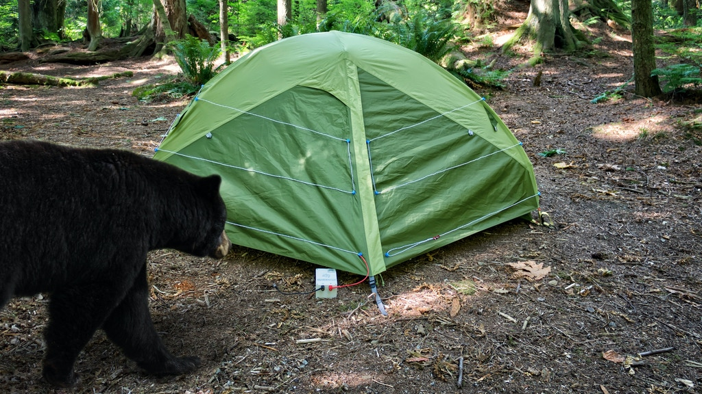 Bearwatch: Wildlife Deterrent Tent System