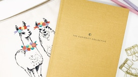 The Curiosity Collective Journal by Amara and Chelsea, Meraki Printing