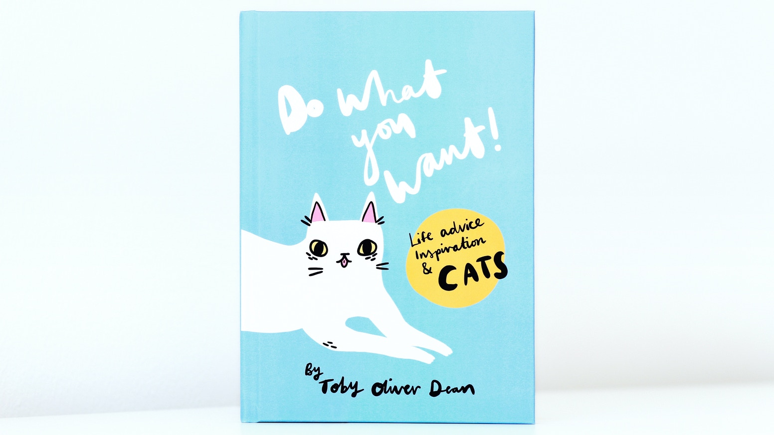 The first I LIKE CATS hardback book! 100 colourful pages of cats and words of wisdom, illustrated by @tobyilikecats