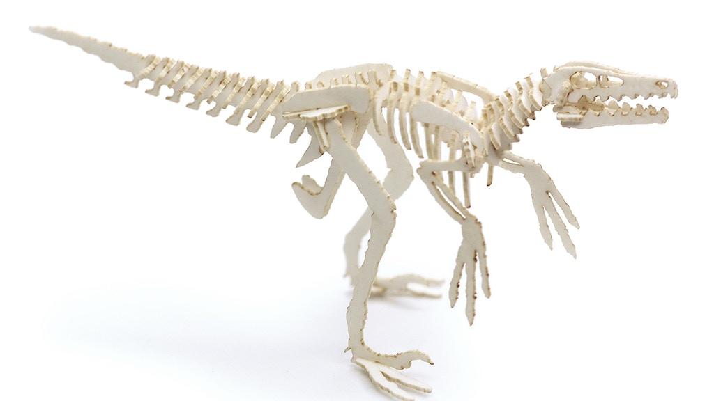 Velociraptors everywhere. RUN! project video thumbnail