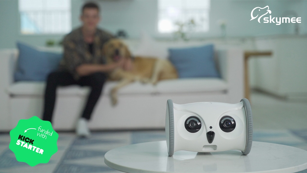 OWL ROBOT: Your Pet's Intimate Nanny and Playmate