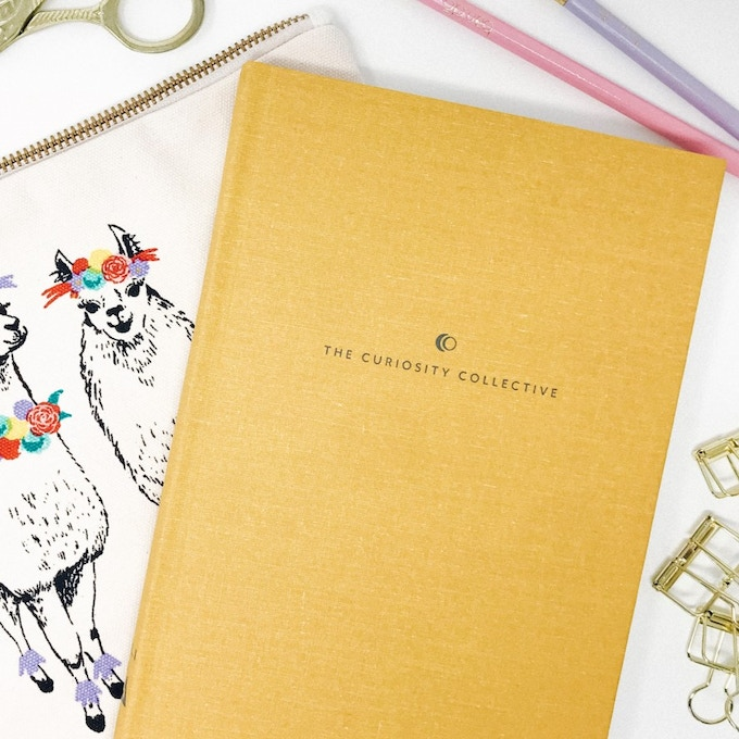 The Curiosity Collective Journal