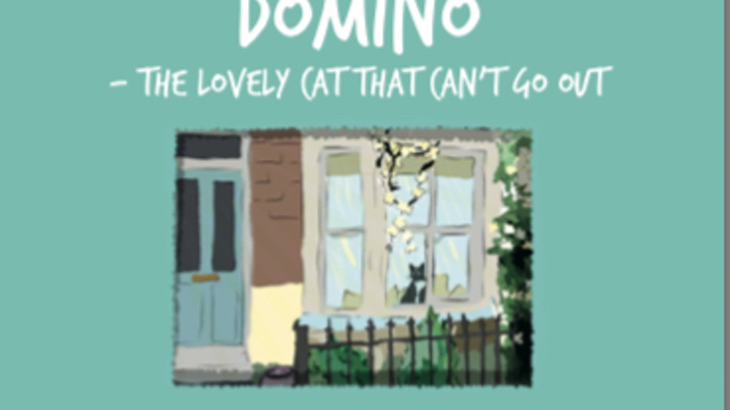 Project image for Domino - The lovely cat that can't go out