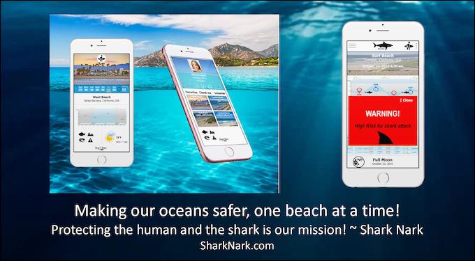 Shark Nark: Keeping the ocean safe one beach at a time!