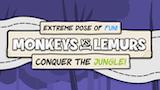 Monkeys vs Lemurs: Conquer The Jungle thumbnail