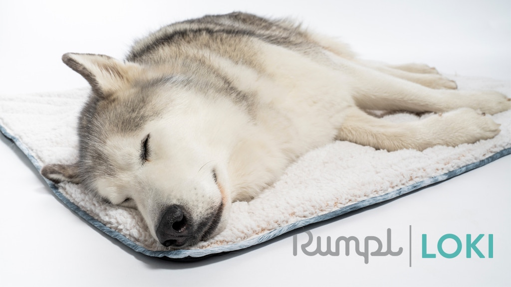 Rumpl X Loki: The Travel Dog Bed project video thumbnail