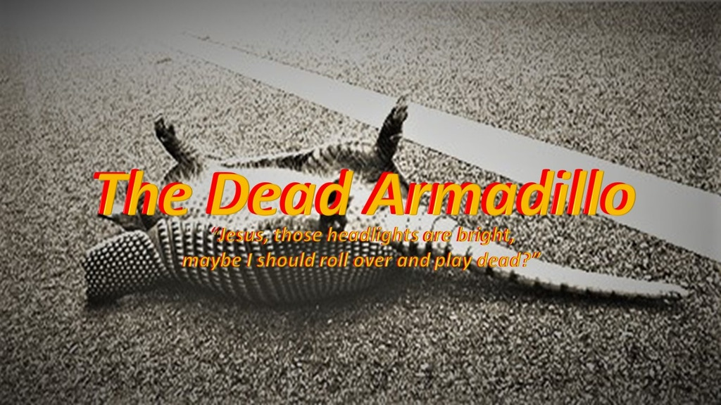 """Project image for """"The Dead Armadillo"""""""