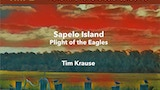 Sapelo Island: Plight of the Eagles (Dungeons & Dragons) thumbnail