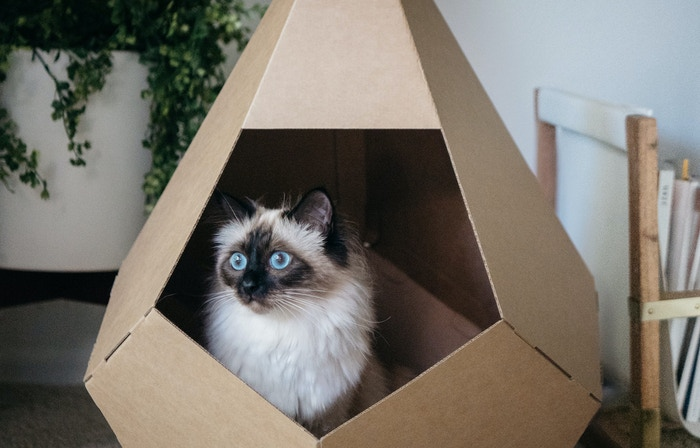 Does your cat love cardboard? So do we. That's why we created this modern hideout. Cardboard re-imagined for your cat, home & planet.